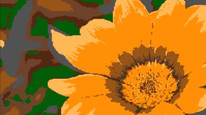 yellowflower use